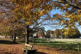 Parc extérieur du centre équestre Eckwersheim situé près de Strasbourg