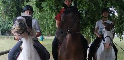 Trois chevaux de club Ursule Tonnerre et Udalgo Club Hippique d'Eckwersheim