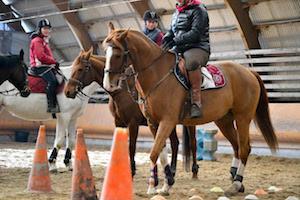 Les reprises chevaux au Club Hippique d'Eckwersheim