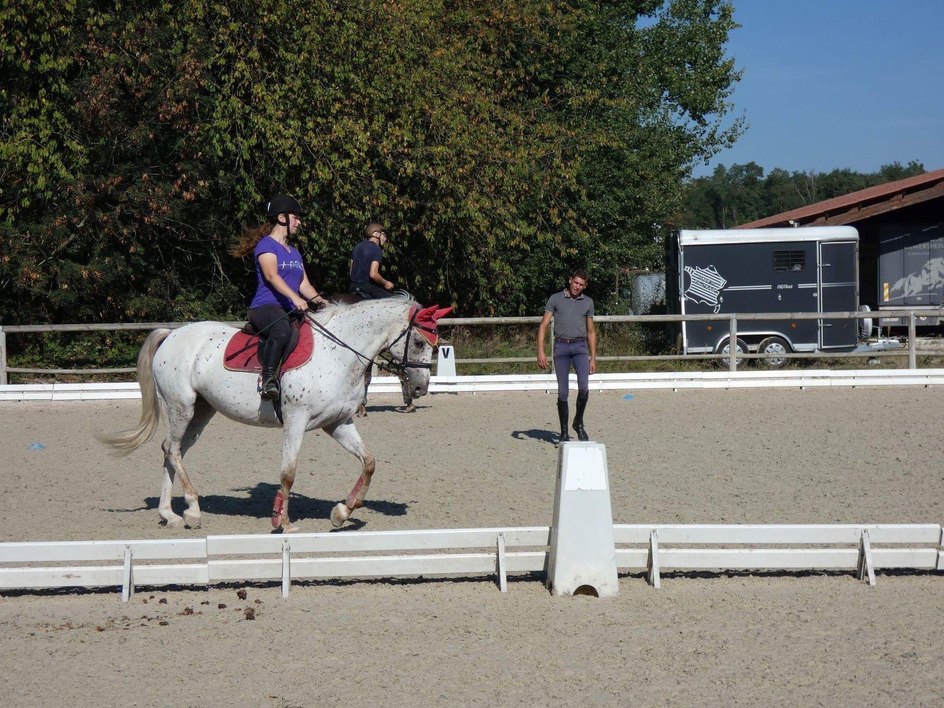 pédagogie cheval au Club Hippique d'Eckwersheim