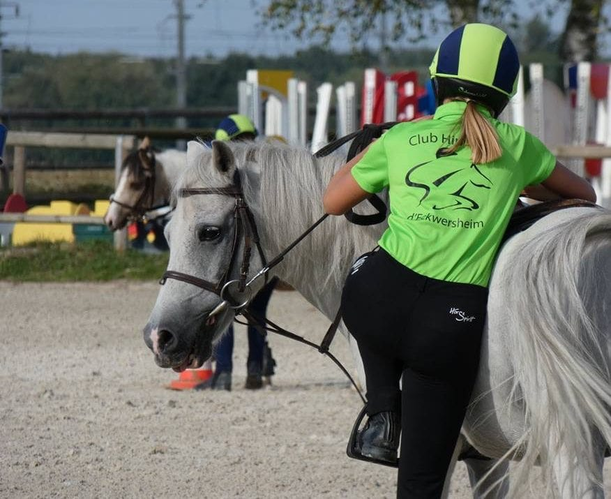 Poney du Club Hippique d'Eckwersheim
